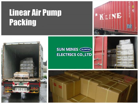 Container / CFS Packing